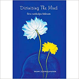 Divinising the Mind Kindle Edition